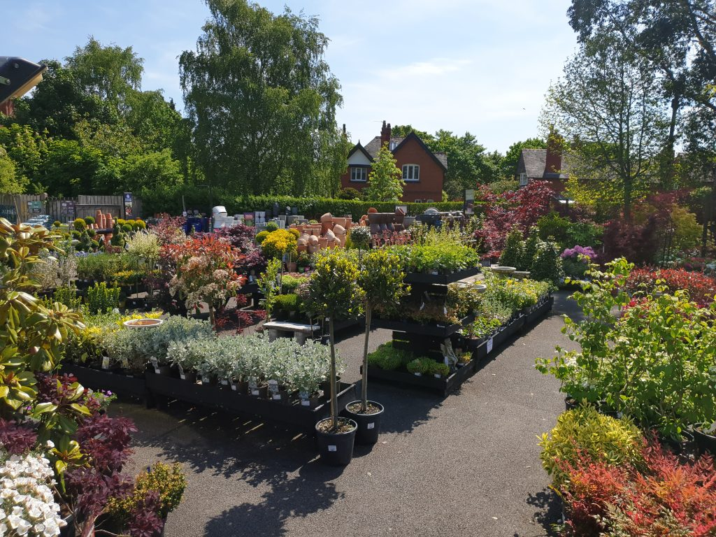 A view of surronding houses around the plant area t Port Sunlight Garden Centre