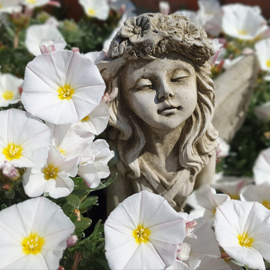 A stone garden ornament of a flower fairy amongst white flowers